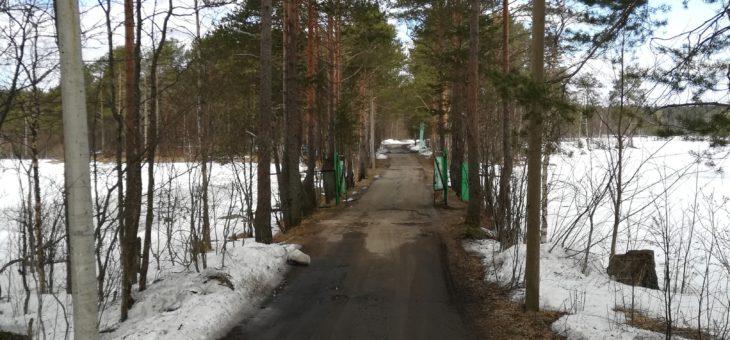 Территорию детского лагеря «Искорка» ждут перемены.
